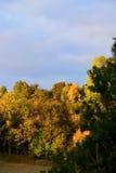 природа осени голубая длинняя затеняет небо На деревьях блески солнца Стоковое Изображение RF