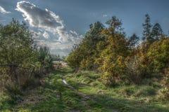 природа осени красивейшая Стоковая Фотография RF