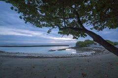 Природа острова Мальдивов Kandooma Стоковое Изображение