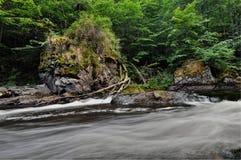 Природа Осло Стоковое фото RF