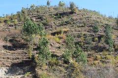 Природа долины Сват красота Сват Стоковая Фотография