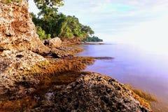 Природа Папуаой-Нов Гвинеи Стоковое Фото