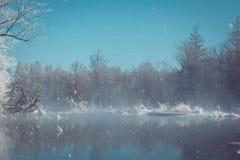 Природа пейзажа Стоковая Фотография RF