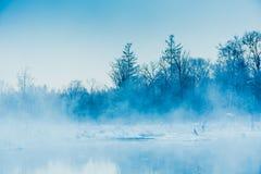 Природа пейзажа Стоковые Фотографии RF