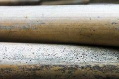 Природа поверхности тросточки Reed стоковая фотография rf