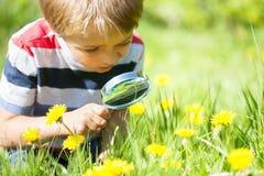Природа ребенка исследуя стоковое изображение rf
