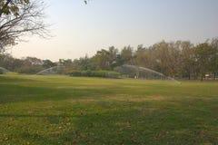 Природа сада Стоковое Изображение RF