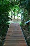 Природа сада Стоковые Изображения RF