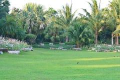 Природа сада Стоковые Фотографии RF