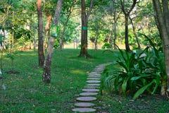 Природа сада Стоковая Фотография RF