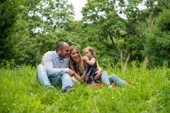 природа семьи играя детенышей Стоковые Изображения