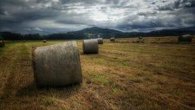 Природа стога сена взгляда Стоковое фото RF