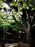 Природа с замком Стоковые Фотографии RF