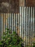 Природа цинка загородки Стоковое Изображение