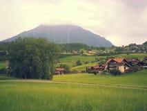 Природа 2013 2014 Швейцарии Стоковые Фотографии RF