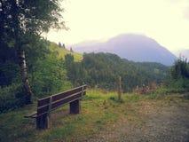 Природа 2013 2014 Швейцарии Стоковая Фотография