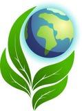 природа экологичности Стоковое Изображение RF
