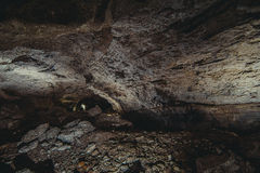 природа элемента конструкции состава подземелья подземная Стоковая Фотография RF