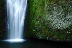 природа драгоценностей Стоковое Фото