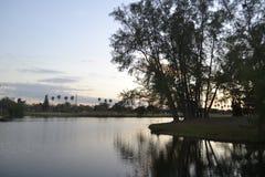 Природа Стоковая Фотография RF