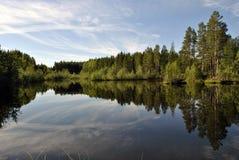 Природа Karelia Стоковая Фотография RF
