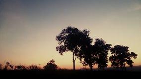 Природа Siluate Стоковые Фотографии RF