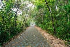 Природные парки Стоковое фото RF