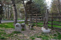 Природный парк Стоковые Изображения RF