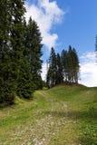 Природный парк Adamello стоковые изображения rf