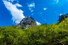 Природный парк Sutjeska, Босния и Герцеговина Стоковое Фото