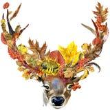Природы осени оленей косуль леса листья предпосылка животной красочные, плодоовощ, ягоды, грибы, желтые листья, плоды шиповника н иллюстрация штока
