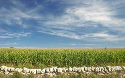 Присицилийская сельская местность Стоковая Фотография