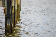 Пристани дока в речной воде лета Стоковая Фотография