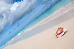 пристаньте бежевую голубую близкую белизну к берегу раковины песка океана Стоковые Изображения