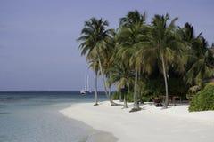 пристаньте валы к берегу песка ладони Мальдивов белые Стоковые Изображения