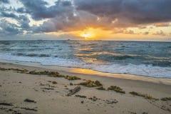 Пристаньте восход солнца к берегу с морской водорослью и твердыми частицами моря в песке Стоковая Фотография RF