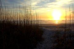 пристаньте восход солнца к берегу Стоковые Изображения