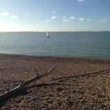 пристаньте девушку к берегу дня меньшяя смотря вода Стоковые Изображения