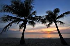 пристаньте заход солнца к берегу тропический Стоковое Изображение