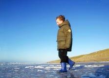 пристаньте зиму к берегу мальчика стоковое изображение rf