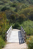 пристаньте каньон к берегу hiking глушь тропки laguna Стоковая Фотография