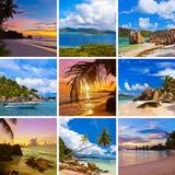 пристаньте коллаж к берегу мечтая захода солнца солнца лета starfish seashells sandcastle песка изображений frangipani цветков ар Стоковое фото RF