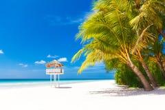 пристаньте красивейшую мечт природу к берегу над белизной взгляда вала лета места песка ладони пристаньте красивейшую природу к б Стоковая Фотография RF