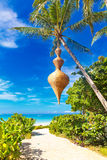 пристаньте красивейшую мечт природу к берегу над белизной взгляда вала лета места песка ладони пристаньте красивейшую природу к б Стоковое Фото