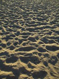 Пристаньте к берегу в утре Стоковые Фото