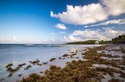 Пристаньте к берегу на Майя riviera около Cancun и Tulum в Мексике на солнечном стоковая фотография