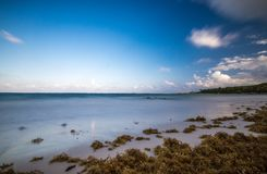 Пристаньте к берегу на Майя riviera около Cancun и Tulum в Мексике на солнечном стоковые фотографии rf
