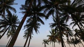 Пристаньте к берегу на провинция острове Phu Quoc, Kien Giang, Вьетнам видеоматериал