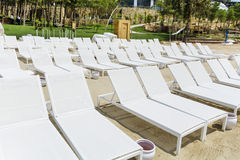 Пристаньте к берегу с белыми sunbeds в ряд на песчаном пляже Стоковые Фотографии RF