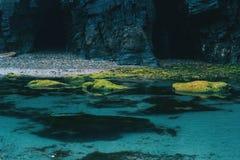 Пристаньте к берегу с камнями Луго мха, галичанином, Испанией стоковое фото